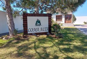 Foto de terreno habitacional en venta en loma del sauz , loma alta, arteaga, coahuila de zaragoza, 0 No. 01