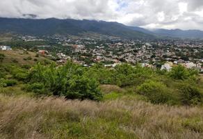 Foto de terreno habitacional en venta en  , loma linda, oaxaca de juárez, oaxaca, 0 No. 01