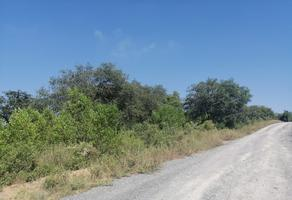 Foto de terreno habitacional en venta en  , loma prieta, montemorelos, nuevo león, 17227198 No. 01