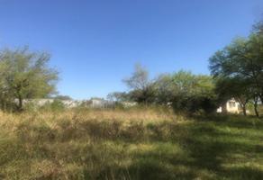 Foto de terreno habitacional en venta en  , loma prieta, montemorelos, nuevo león, 18448110 No. 01