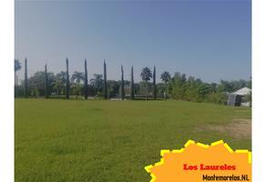 Foto de terreno habitacional en venta en  , loma prieta, montemorelos, nuevo león, 19581133 No. 01