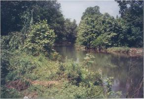 Foto de rancho en venta en loma prieta , rio ramos, allende, nuevo león, 0 No. 01