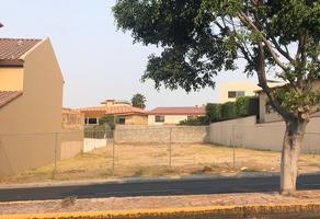 Foto de terreno habitacional en venta en  , lomas de agua caliente 1a sección, tijuana, baja california, 18379679 No. 01