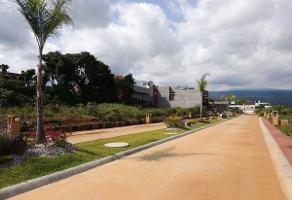 Foto de terreno habitacional en venta en  , lomas de ahuatlán, cuernavaca, morelos, 8265165 No. 01