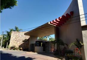 Foto de terreno habitacional en venta en lomas de ahuatlan , lomas de ahuatlán, cuernavaca, morelos, 12483905 No. 01