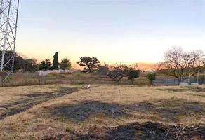 Foto de terreno habitacional en venta en lomas de ahuatlan , lomas de ahuatlán, cuernavaca, morelos, 19350572 No. 01