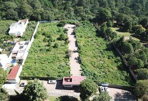 Foto de terreno habitacional en venta en lomas de ahuatlan , real de tetela, cuernavaca, morelos, 17940983 No. 01