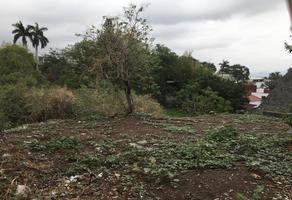 Foto de terreno comercial en venta en  , lomas de atzingo, cuernavaca, morelos, 7300246 No. 01
