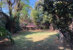 Foto de terreno habitacional en venta en  , lomas de cortes, cuernavaca, morelos, 12343936 No. 01