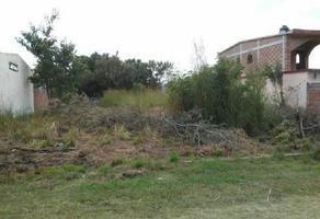 Foto de terreno habitacional en venta en  , lomas de cortes, cuernavaca, morelos, 14157715 No. 01
