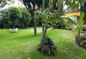 Foto de casa en renta en  , lomas de cortes, cuernavaca, morelos, 18509837 No. 01