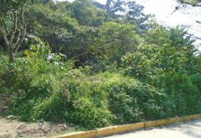Foto de terreno habitacional en venta en  , lomas de flores, coatepec, veracruz de ignacio de la llave, 8477446 No. 01