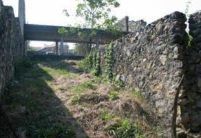 Foto de terreno habitacional en venta en  , lomas de jiutepec, jiutepec, morelos, 11153972 No. 01
