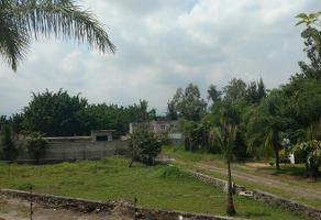 Foto de terreno habitacional en venta en  , lomas de jiutepec, jiutepec, morelos, 11299481 No. 01