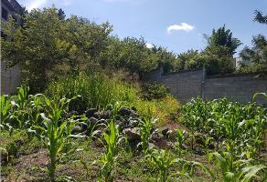 Foto de terreno habitacional en venta en  , lomas de jiutepec, jiutepec, morelos, 9331015 No. 01
