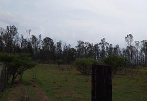 Foto de terreno habitacional en venta en  , lomas de la campiña, morelia, michoacán de ocampo, 0 No. 01