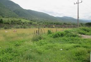 Foto de terreno habitacional en venta en  , lomas de los coyotes, iguala de la independencia, guerrero, 6550943 No. 01