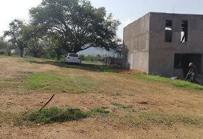 Foto de terreno habitacional en venta en  , lomas de paragüito, santa cruz xoxocotlán, oaxaca, 0 No. 01