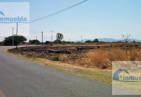 Foto de terreno habitacional en venta en  , lomas de san juan, san juan del río, querétaro, 8489630 No. 01