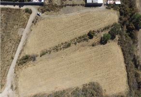 Foto de terreno habitacional en venta en  , lomas de tejeda, tlajomulco de zúñiga, jalisco, 6916525 No. 01