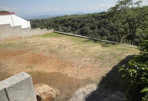 Foto de terreno habitacional en venta en  , lomas de tetela, cuernavaca, morelos, 14312224 No. 01