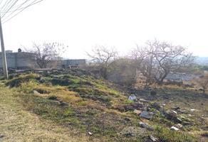 Foto de terreno habitacional en venta en  , lomas de texcal, jiutepec, morelos, 0 No. 01