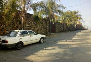 Foto de terreno habitacional en venta en  , lomas de trujillo, emiliano zapata, morelos, 0 No. 01