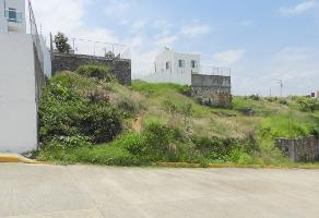 Foto de terreno habitacional en venta en lomas de tzompantle, cuernavaca, morelos , lomas de zompantle, cuernavaca, morelos, 8186485 No. 01