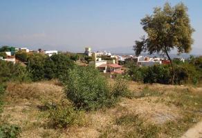 Foto de terreno habitacional en venta en  , lomas de zompantle, cuernavaca, morelos, 0 No. 01