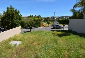 Foto de terreno habitacional en venta en lomas del agua caliente s/n , lomas de agua caliente, tijuana, baja california, 0 No. 01