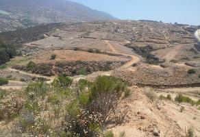 Foto de terreno habitacional en venta en lomas del paraiso , lomas de la presa, ensenada, baja california, 0 No. 01