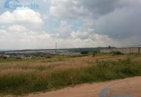 Foto de terreno habitacional en venta en  , lomas del pedregal, tlajomulco de zúñiga, jalisco, 11830950 No. 01
