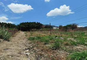 Foto de terreno comercial en venta en  , lomas del sur, tuxtla gutiérrez, chiapas, 0 No. 01