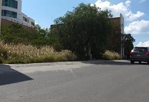 Foto de terreno habitacional en venta en  , lomas del tecnológico, san luis potosí, san luis potosí, 14949226 No. 01