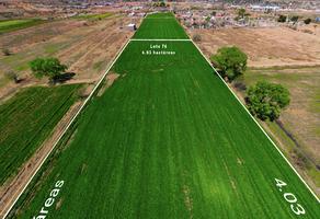 Foto de terreno comercial en venta en lombardo toledano , fundadores, chihuahua, chihuahua, 0 No. 01