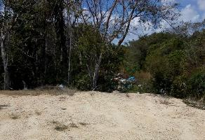 Foto de terreno industrial en venta en long island 93, supermanzana 319, benito juárez, quintana roo, 0 No. 01