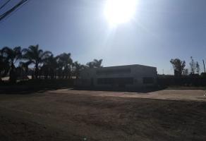 Foto de terreno habitacional en renta en lopez mateos sur , villa california, tlajomulco de zúñiga, jalisco, 6899412 No. 01