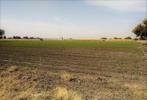 Foto de terreno comercial en venta en los álvarez , los álvarez, pedro escobedo, querétaro, 0 No. 01
