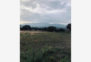 Foto de terreno habitacional en venta en  , los ángeles, santa cruz xoxocotlán, oaxaca, 0 No. 01