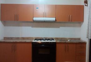 Foto de casa en renta en  , los arcos, irapuato, guanajuato, 14054192 No. 01