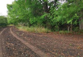 Foto de rancho en venta en  , los arroyos, montemorelos, nuevo león, 0 No. 01