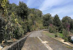 Foto de terreno habitacional en venta en  , los carriles, coatepec, veracruz de ignacio de la llave, 6708552 No. 01