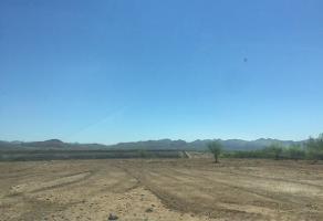 Foto de terreno habitacional en venta en  , los cedros, chihuahua, chihuahua, 4383517 No. 01
