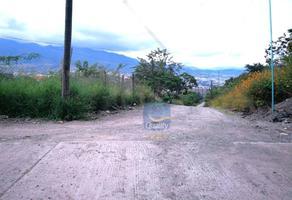 Foto de terreno habitacional en venta en  , los cedros, chilpancingo de los bravo, guerrero, 14024360 No. 01