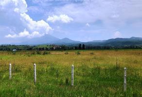 Foto de terreno habitacional en venta en  , los cerritos, tala, jalisco, 6890902 No. 01