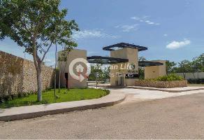 Foto de terreno habitacional en venta en  , los cocos, mérida, yucatán, 13120632 No. 01