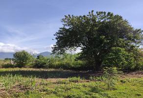 Foto de terreno habitacional en venta en  , los compadres, tlalixtac de cabrera, oaxaca, 22178970 No. 01