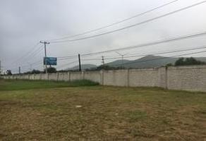 Foto de terreno habitacional en renta en  , los cristales, monterrey, nuevo león, 0 No. 01