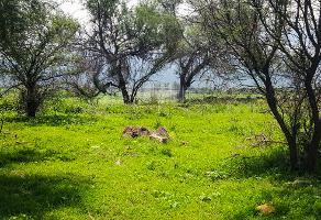 Foto de terreno habitacional en venta en los dolores , santa cruz de las flores, tlajomulco de zúñiga, jalisco, 3624372 No. 01