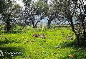 Foto de terreno habitacional en venta en los dolores , santa cruz de las flores, tlajomulco de zúñiga, jalisco, 5655441 No. 01